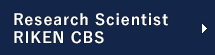 Research Scientist, RIKEN CBS